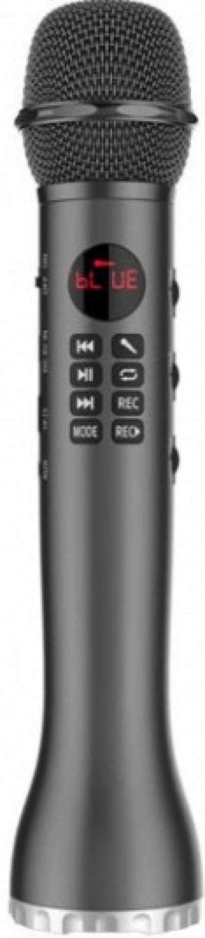 Микрофон DIVA L-598